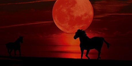 Blood Moon Shadows, a Free Online MeWe Awakening Panel tickets