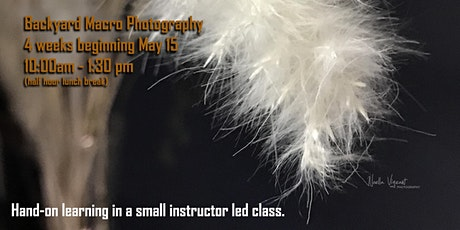 Backyard Macro Photography Class tickets