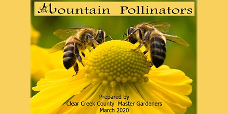 Virtual Extension Presentation: Mountain Pollinators tickets