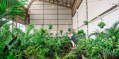 Brisbane - Huge Indoor Plant Warehouse Sale - Mad Hatter's Party tickets