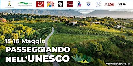 PASSEGGIANDO NELL'UNESCO | I gioielli del Feletto biglietti