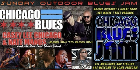 Huge Outdoor Chicago Blues Show tickets