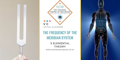 The Frequency of the Meridian System ™ - tuning fork therapy tickets
