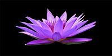 Guided Meditation with Doreen Chelton tickets