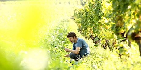Online Weinverkostung - zu Gast ist der Winzer Alexander Pflüger Tickets