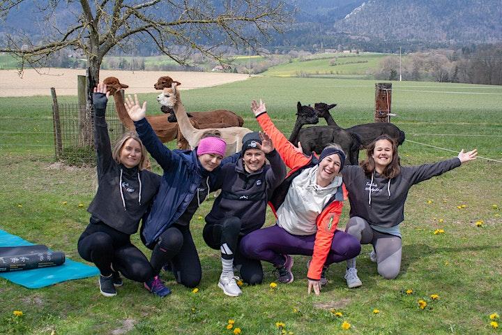 Alpaka Yoga Solothurn-Selzach: Bild