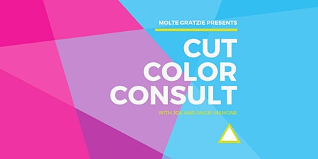 Beauty Industry Cut + Color + Consult tickets