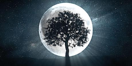 Full Moon Meditation Circle - May tickets
