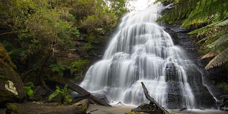 Lorne Waterfalls Circuit 18-20km Hike in Lorne, June the 5th, 2021 tickets