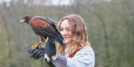 Country Walk with a Hawk tickets