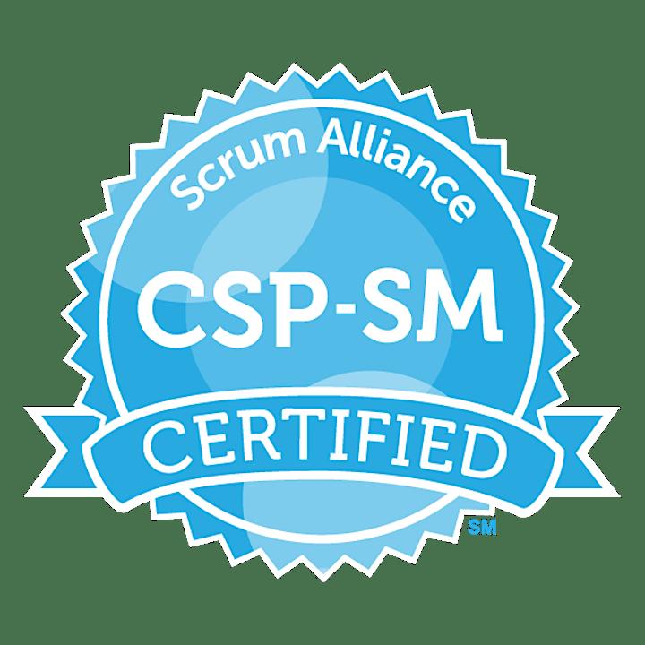CSP-SM 1:1 Mentoring -ScrumAlliance -Certified Scrum Professional -English image