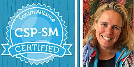 CSP-SM 1:1 Mentoring -ScrumAlliance -Certified Scrum Professional -English tickets
