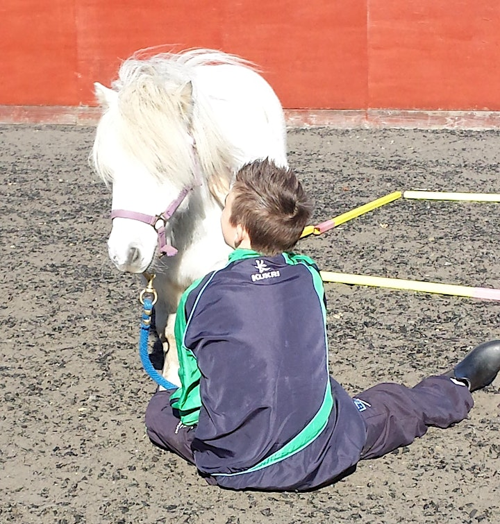 National Register of  Equine Assisted Activity Practioners image