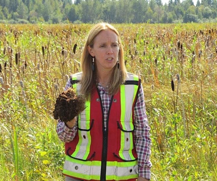 Preparing field campaigns in peatland environments image