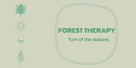 Forest therapy - Turn of the seasons - AUTUMN tickets