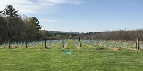 Outdoor Yoga at the Hardwick Winery tickets