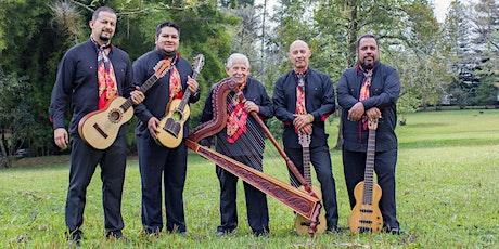 Tlen Huicani - Online Concert tickets