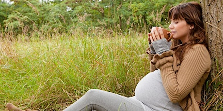 Herbal Medicine and Foods for Childbirth and Post-Partum tickets
