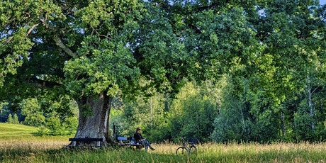Pause Moment take a break under the Oak tree sessions Friday tickets