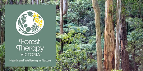 Forest Therapy Experience: Narr-Maen Reserve, Croydon Hills tickets