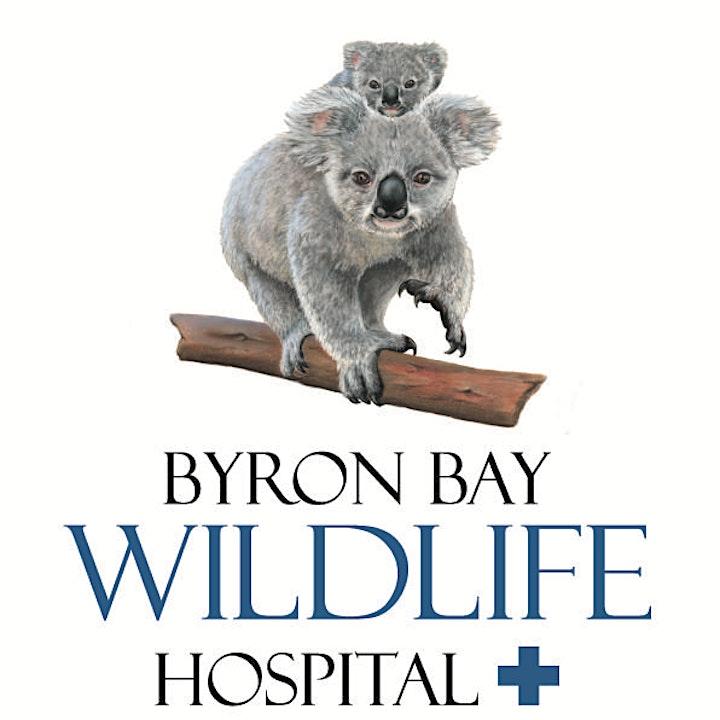 Byron Bay Wildlife Hospital & UD Trucks Australia Partnership Launch image