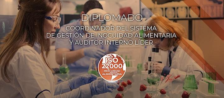 Imagen de Diplomado ISO 22000
