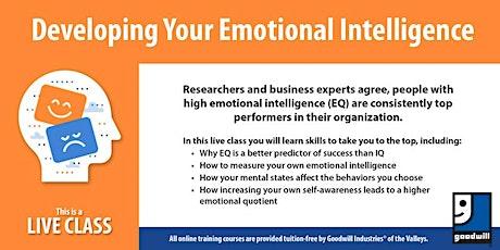 Developing Emotional Intelligence tickets