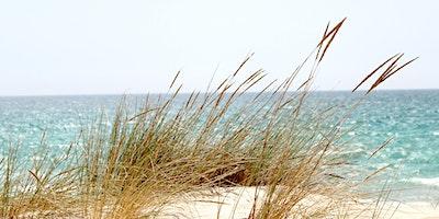 Soul-Rest Retreats in Pawleys Island 2021