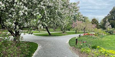 Walking Tour: Spring Blooms