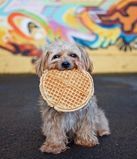 Waffles & Woofles tickets