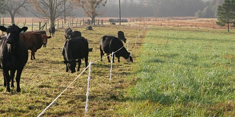Grazing Management for Livestock Producers tickets