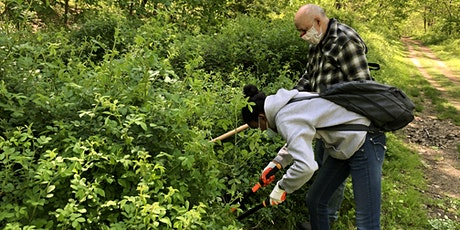 Invasive Plant Management at Saxon Woods Park, Sponsored by Maxx Properties tickets