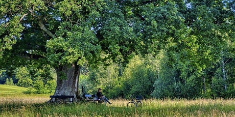 Pause Moment take a break under the Oak tree - Wednesday tickets