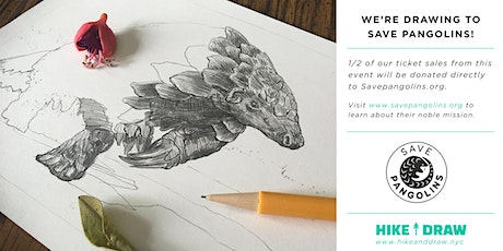 Conservation Series: How to Draw Pangolins tickets