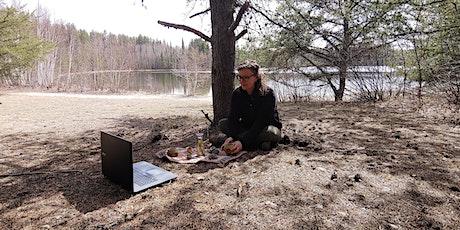 Relaxer avec la thérapie forestière billets