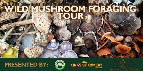 Wild Mushroom Foraging Tour tickets