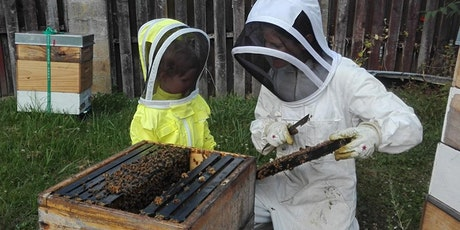 Hands-On Urban Beekeeping  (Part One) tickets