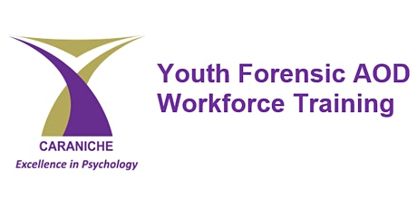 Forensic Youth AOD Workforce Training (4 x half day sessions) tickets
