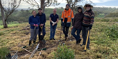Restoring Habitat in the Adelaide Hills - Planting in Gumeracha May 2021 tickets