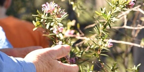 Introduction to Bushcare Workshop tickets