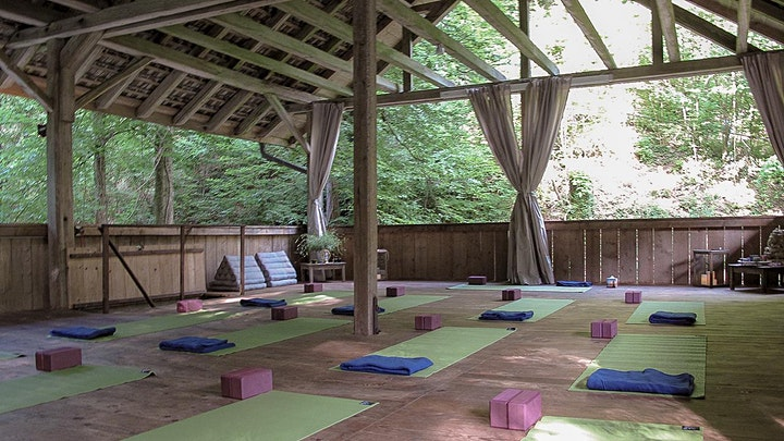 Mini-retreat in the nature: move towards healthier relationships image