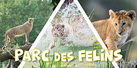 Découverte du Parc des Félins - 24,9€ ULTRA PROMO billets