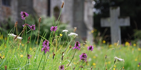 Identify & Record Wildflowers and Plants - Peakirk tickets
