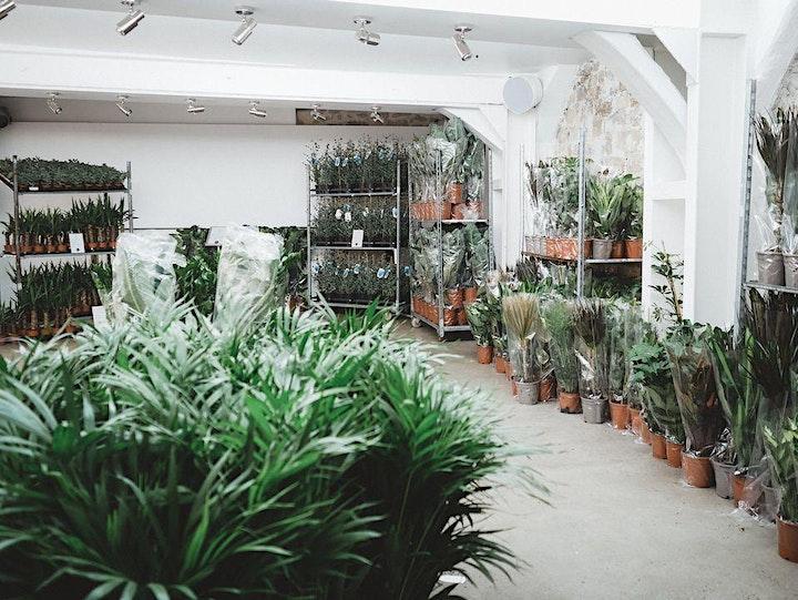 Imagen de Valladolid // El Jardín Efímero de Maison Bouture