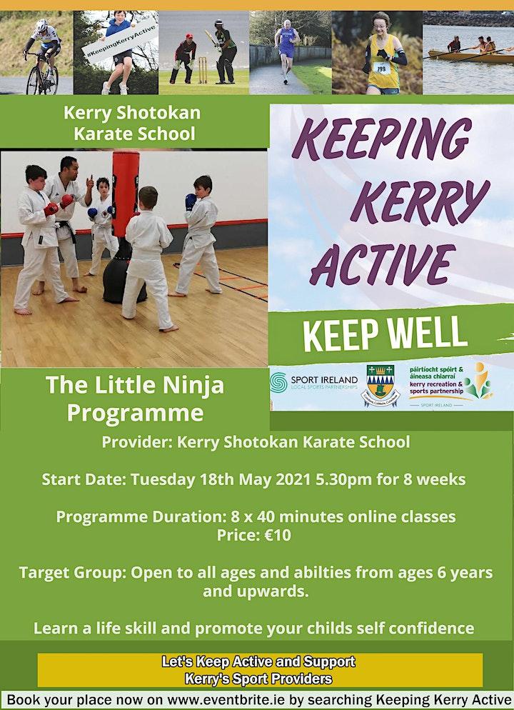 Keeping Kerry Active -  The Little Ninja Programme image