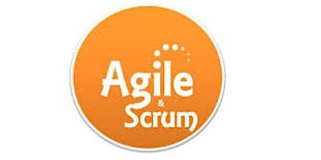 Agile & Scrum1 Day Training in Antwerp tickets
