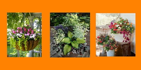 Summer Plant n' Sip: Porch Pots, Hanging Baskets, Window Boxes tickets