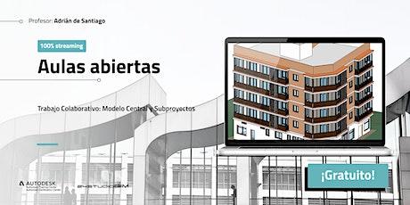 Aula Abierta XXIII: Trabajo colaborativo -  Modelo Central y Subproyectos entradas