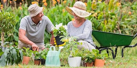 Savvy Seniors Series Movement and Flexibility billets
