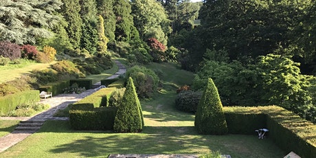 Open Garden (Optional Tea)- Red Cross.  Sherwood House , Crediton 12th June tickets